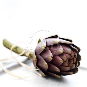 Stock artichoke